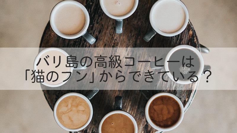 バリ島の高級コーヒーは 「猫のフン」からできている?