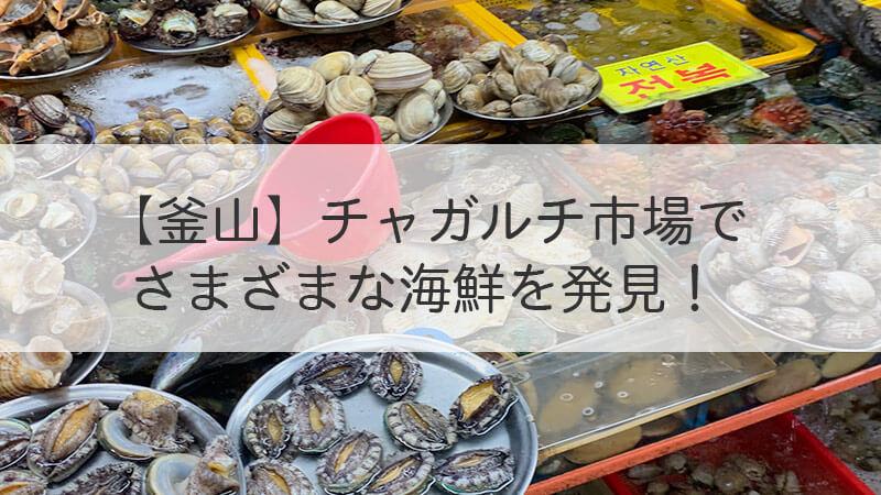 【釜山】チャガルチ市場で様々な海鮮を発見!